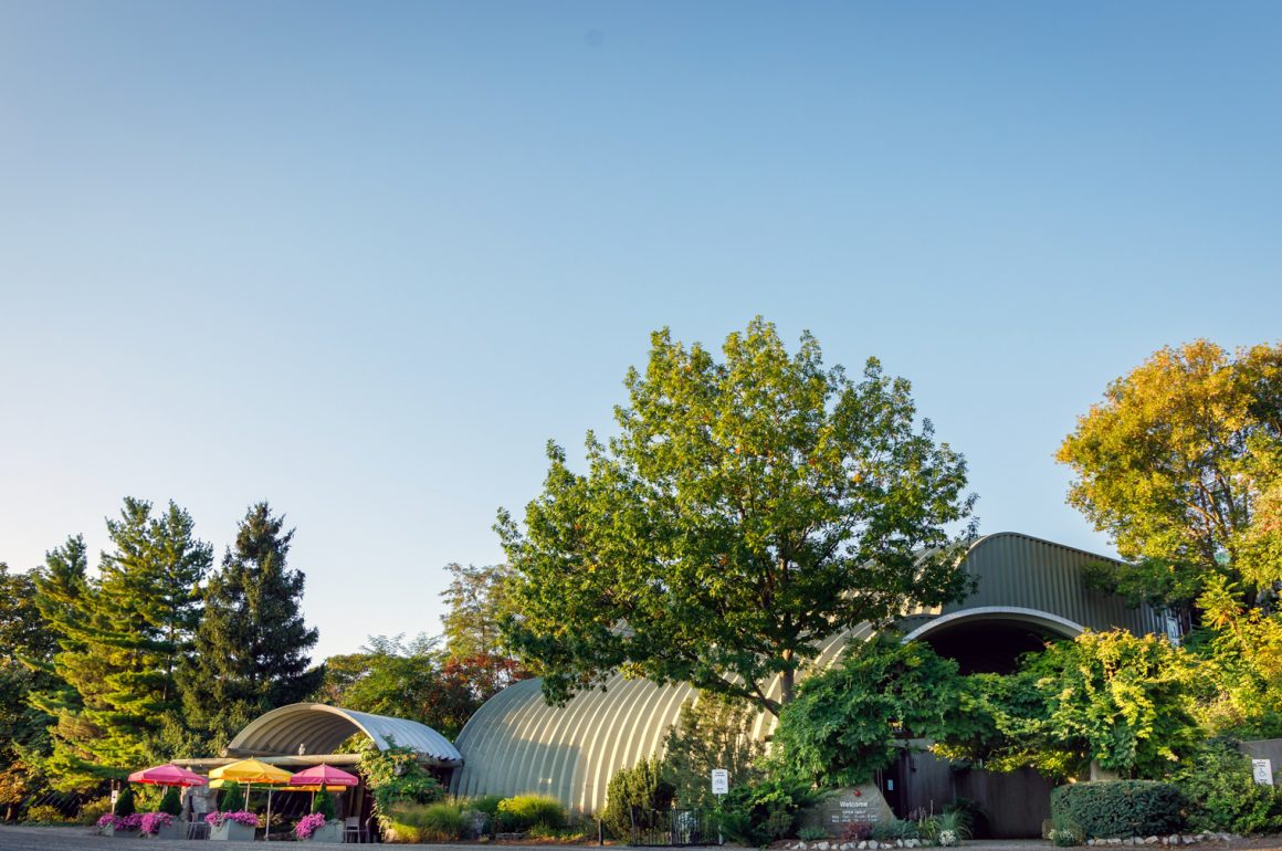 Sustainability and Innovation at Malivoire Wine